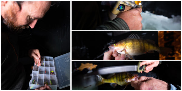 ice fishing lures, yellow perch